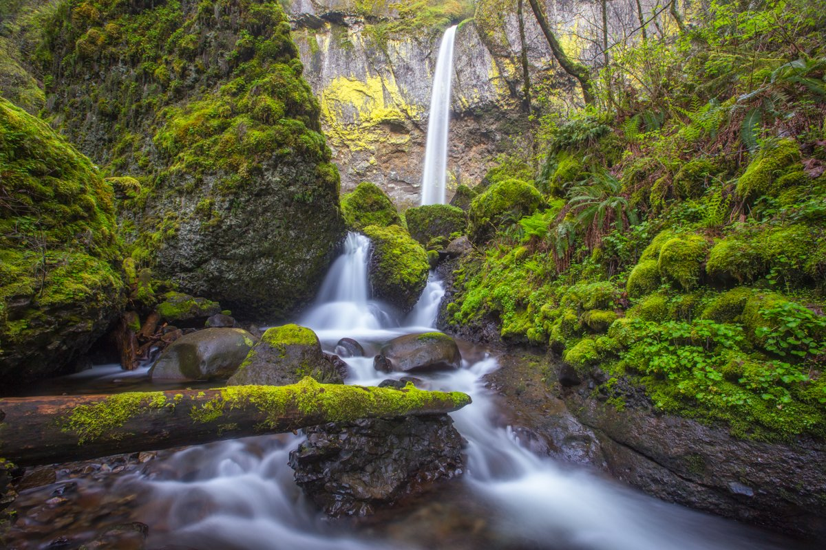 Waterfall in spring, Columbia River Gorge.