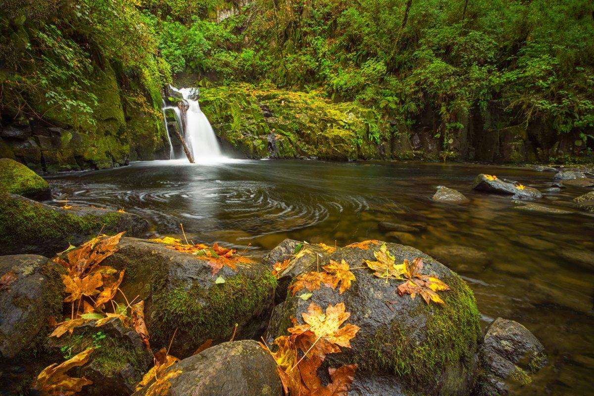 waterfall in fall