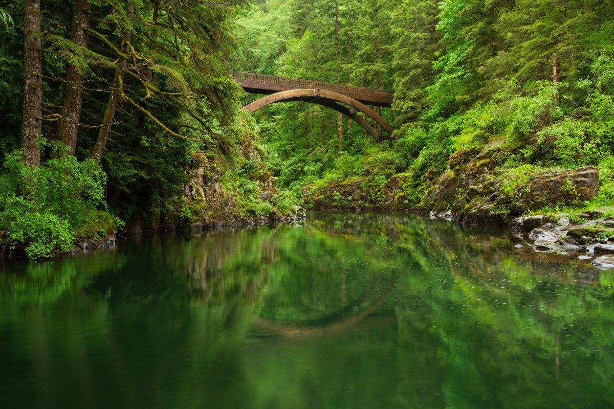 Wooden bridge reflection on calm river.