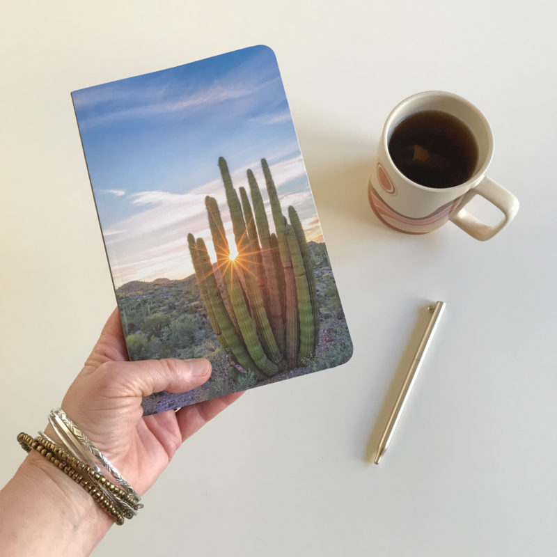 hand holding journal