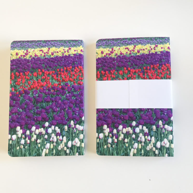 side by side of journal backs