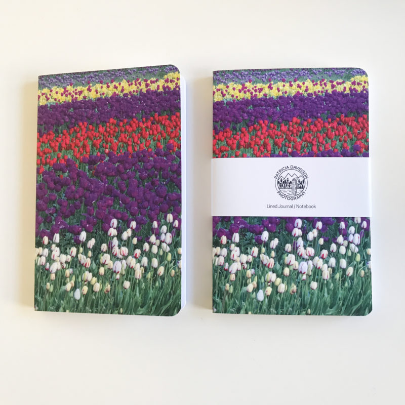 side by side front of journals